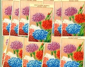 25 Original Vintage French Flower Seed Packet Labels.  Labels date back to 1910, 1920s. Great for Crafts Scrapbooking  Decoupage  Weddings