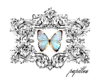 Instant  Download Large Single Image - Papillon Fabric Transfer