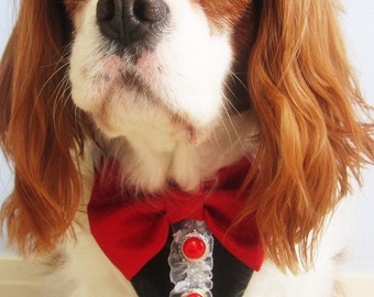 Formal  Wedding Dog or Cat Tuxedo Collar All Sizes Black Red for Valentines Day