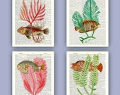 4 Sea fan fish collage prints, oceanic art  nautical Dictionary Art, bathroom decor, seafan, fishes illustrations, wave sea sailor ship