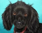 12x12 Custom Pet Portrait Painting by Sharon Lamb