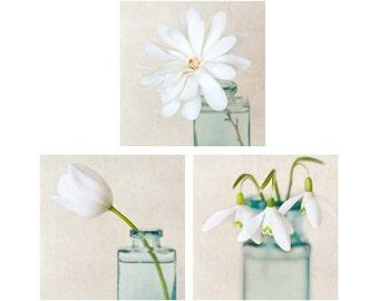 White Flower Photo Set, Botanical Print Set, Neutral Decor, Pale, Photography Set, Triptych, Set of 3 Prints