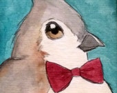 Tufted Titmouse in a Most Festive Bowtie