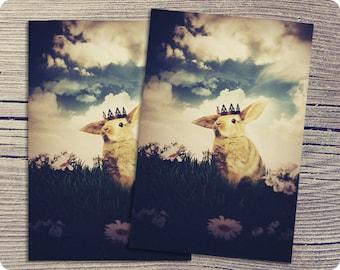 Bunny Postcard, 4x6 Woodland Postcard, The Little Bunny Prince