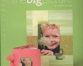 The Big Picture by Stacy Julian Book Destash Supplies
