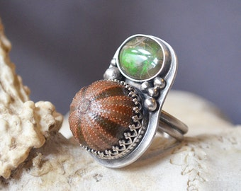 Black Tie Required Ring Made With Tuxedo Sea Urchin And Green Ammonite