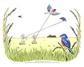 Birds of North America 8x10 digital print