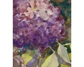 ACEO Flower Watercolor Original, Hidden Hydrangea, Violet, Watercolor Art From Nature