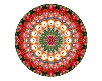 Mandala Art Print in Orange, Red, Green and White - Individuation Mandala - Meditative Kaleidoscope Print