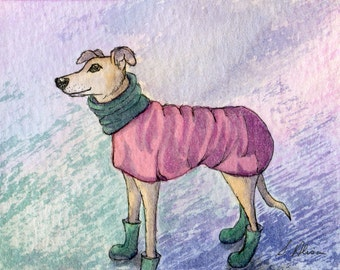 Greyhound whippet dog 8x10 print - coat and bootees