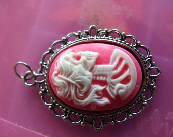 Lolita Steampunk Gothic skull  Hot pink and White   Cameo