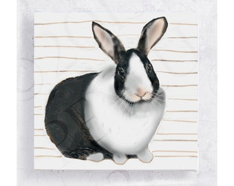 Bunny Art - Animal art - Dutch Rabbit - Canvas Print on 5x5 Wood Frame  - Where's Alice - Animal Portrait - Wall Art - Nursery Art