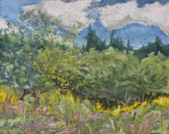 "Art Plein Air Oil Painting Landscape Impressionist Original Wild Flower Sky Cloud Quebec Canada By Fournier "" August On The Field "" 14 x 18"