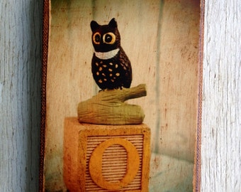 Wall Art - Toy  O is for Owl Photo  A /Art- 4x6