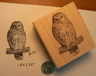 Owl rubber stamp WM P31