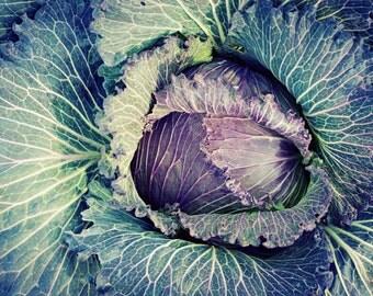 "Food Photography | rustic farmhouse wall art | kitchen art | vegetable garden print | dining room wall art | purple green  ""Winter Garden"""