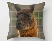 Llama Pillow Cover Natural History Woodland Forest Brown Llama Pillow Brown