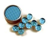 Glass Push Pins  Thumb Tacks Cork Board Pins in Blueberry Polka Dots  with Gift Tin (PT95)