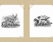 Printable Dog and Deer Hunting Print Set 8 x 10 Hunting Lodge Style Dog Print Deer Print Fall Print Autumn Print Antler Print Woodland Art