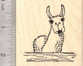 Drama Llama Rubber Stamp, Clucking with Attitude Wood Mounted J23613
