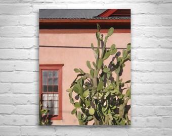 Arizona Architecture, Old Tucson, Barrio Viejo, Window Picture, Southwest Cactus Art, Fine Art Photography, Southwestern Art