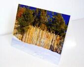 SALE - Pinon Tree Fence Snow New Mexico  - BLANK 4x6 Photo NoteCard