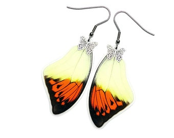 Real Butterfly Wing Earrings (Hebomoia Glaucippe Forewing - E194)