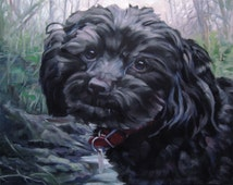 BonnieLass, custom pet portrait oil paintings by puci, 10x12""