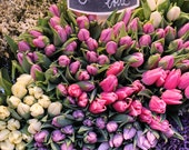 Paris Photography, Spring in Paris, Pink and Purple Tulips, France, Paris Print - flower decor, kitchen art, chalkboard menu