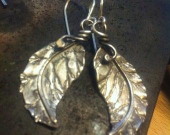 Organic Elm Leaf Earrings - Sterling Silver, Unique, Handmade, OOAK