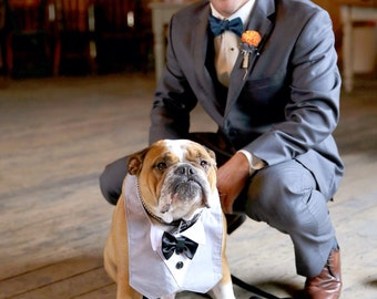 Dog Tuxedo Bow Tie Cuffs Wedding Special Event
