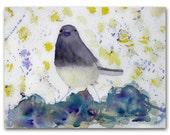 Modern Bird Watercolor Painting Junco Snow Bird Songbird Original Fine Art on Paper 9x12  Abstract Contemporary Art Under 100