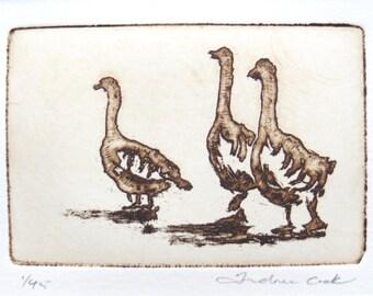 three geese - original etching and aquatint