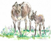 BURRO DONKEY & Colt Original Watercolor on Ink Print Matted 11x14 Ready to Frame