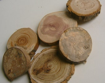 50 Assorted  Blank Tree Branch Slices 1.5 to 2 inch Drilled