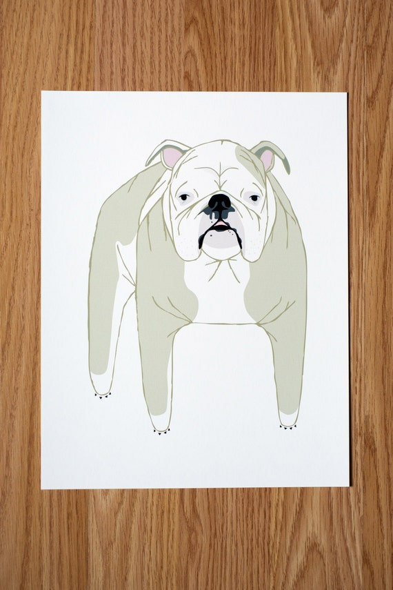 English Bulldog Illustration - FREE US SHIPPING