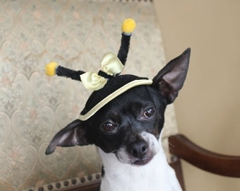 Very cute  hat for dog or cat