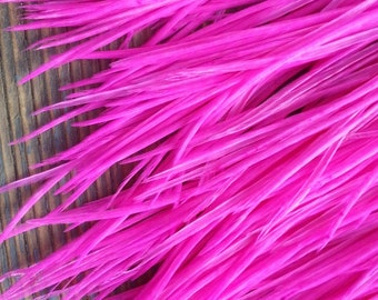 "12 Long Hot Pink Rooster Hackle Feathers (5-8"" plus) For Hair Extensions and Crafts - SHERBROOKE"