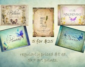 5 5x7 Prints butterfly bundle 1