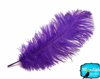 "Large ostrich plumes, 10 Pieces - 11-13"" PURPLE Ostrich Dyed Drabs Feathers : 2171"