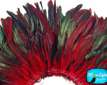 Rooster Tail Feathers, 2.5 Inch Strip - RED Half Bronze Coque Tail Strung feathers: 524