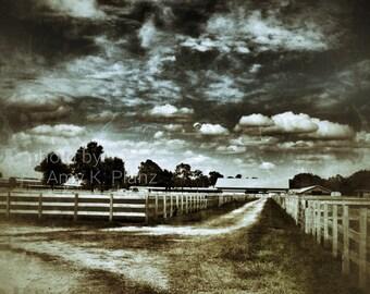 8x10 Dramatic Walking Dead inspired landscape photo