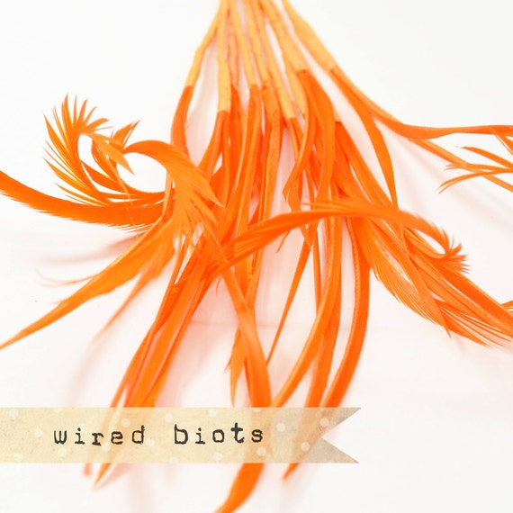 10 bundles - 25-30pcs - ORANGE - Goose Biots on Wire - could be curled - premium millinery supply, fishing supply, fly tying