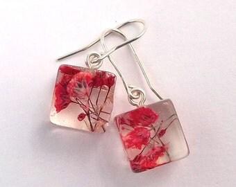 Botanical Resin Earrings. Resin Flower Earrings. Resin Jewelry.  Handmade Jewelry with Real Flowers - Red Baby's Breath.