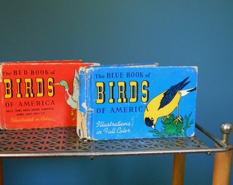Vintage Set of Two 1930s 1940s Birds of America Books Published by Whitman