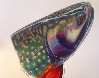 """FULL size 11x17"""" Brook Trout Limited Edition Print"""