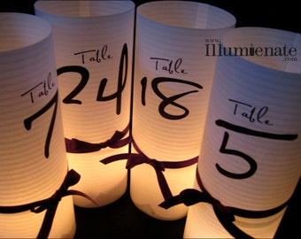 15 Numbered Custom Luminary Centerpiece -Table Number Wedding Reception