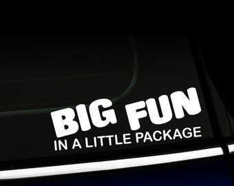 Big Fun in a Little Package decal