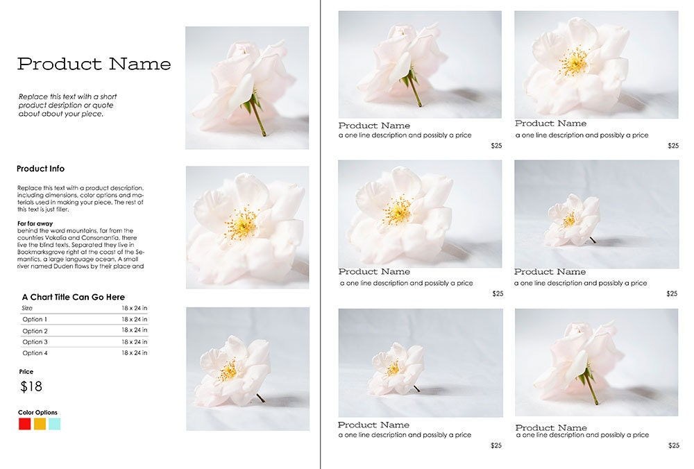 DIY Photoshop Line Sheet Template   Promote Your Business To Retailers