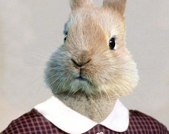 Bernice Bunny, School Portrait - 8 X 10 Art Print